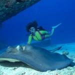 Yacht Charter Bimini Scub Diving