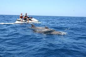 FREE Jet Ski on Miami Boat Rental