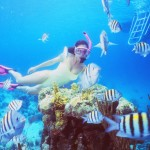 Scuba Diving on Yacht Charter