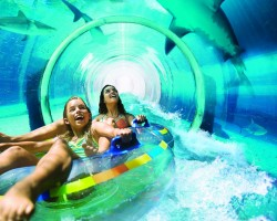 Atlantis Water Slide